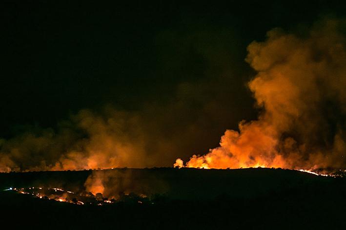 Arrasa incendio forestal  el sur de Arizona
