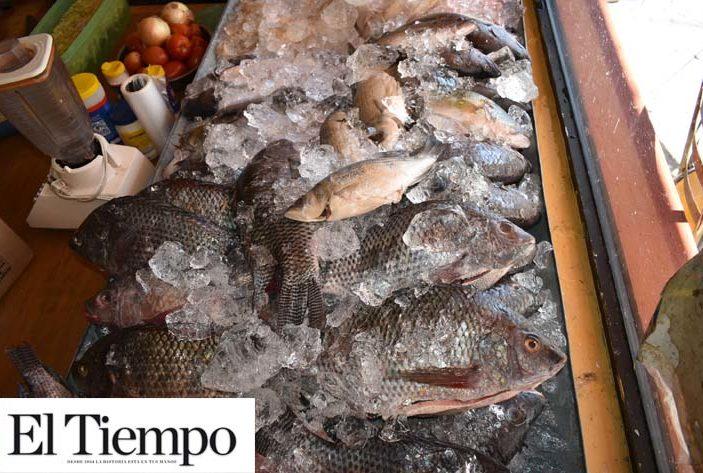 Aumenta precio de pescado