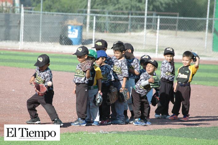Yankees caza a los Halcones