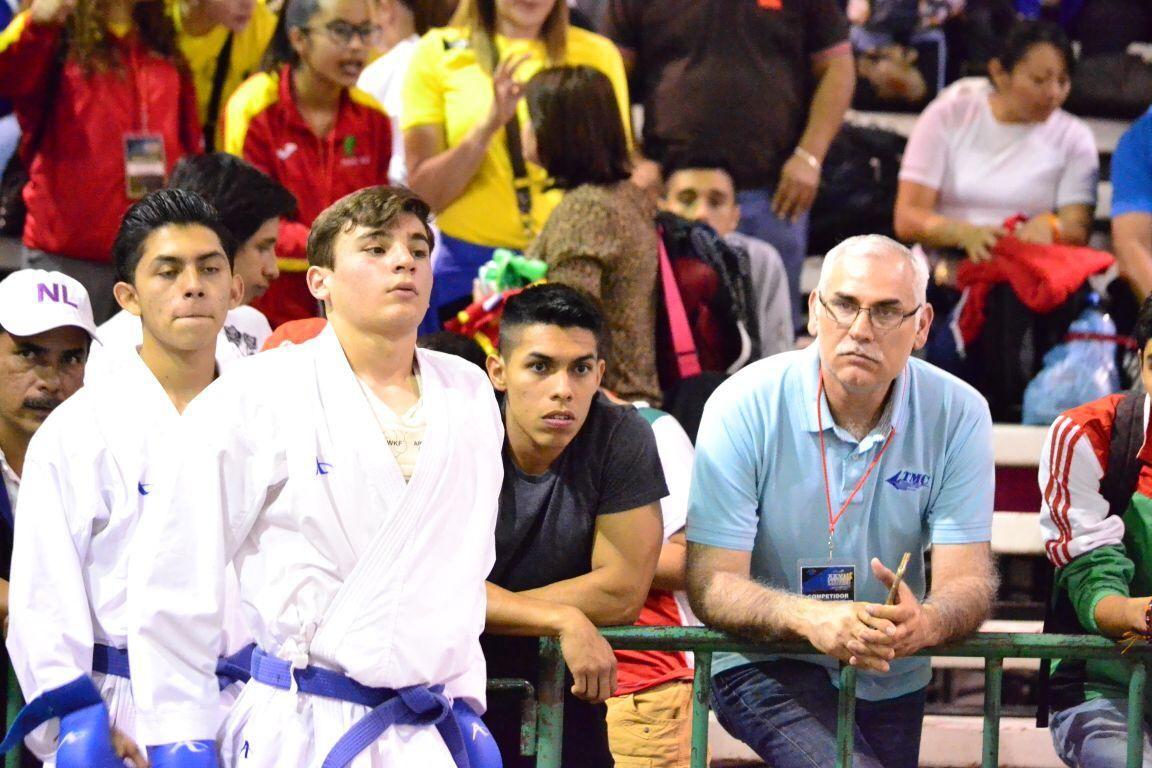 Mi pasión, las artes marciales
