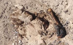 Localizan al menos 18 cuerpos en fosas clandestinas