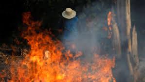 Focos de incendio en la Amazonía aumentan un 28 % en julio
