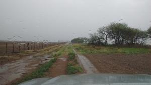 Recientes lluvias favorecerán a la  siembra y ganado