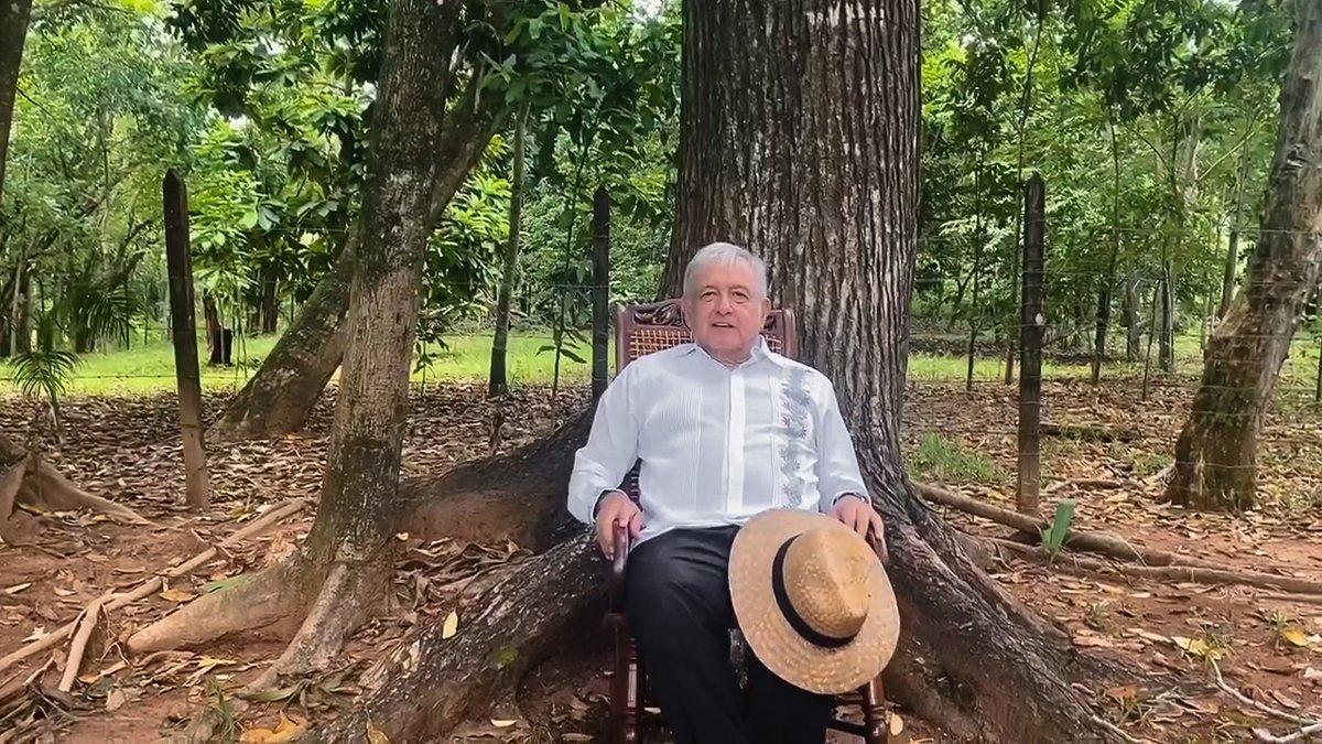 Negar registro a México Libre, un triunfo para el país: AMLO