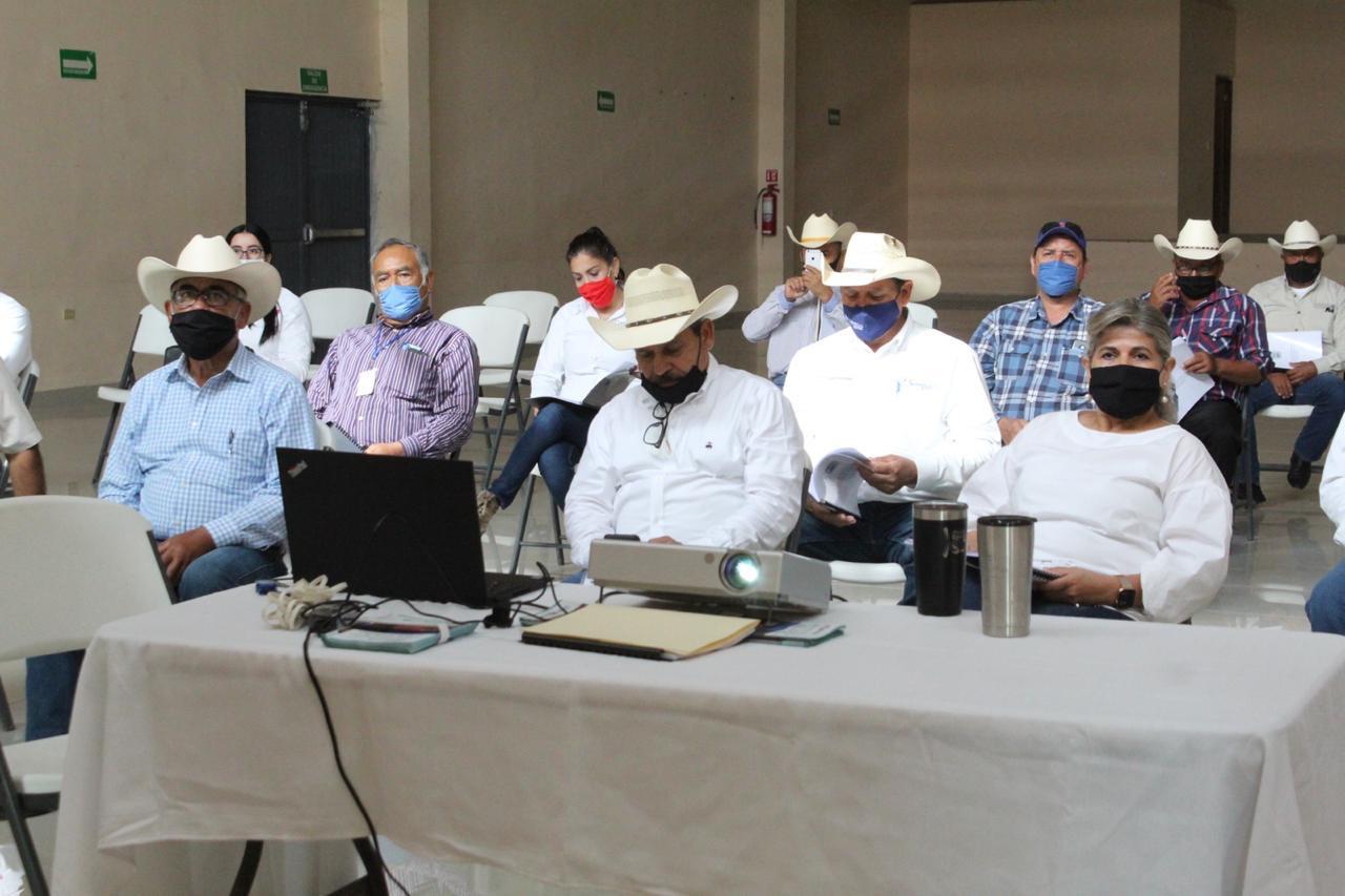 Reconoce Gladys Ayala efectividad en reformas a Ley Ganadera