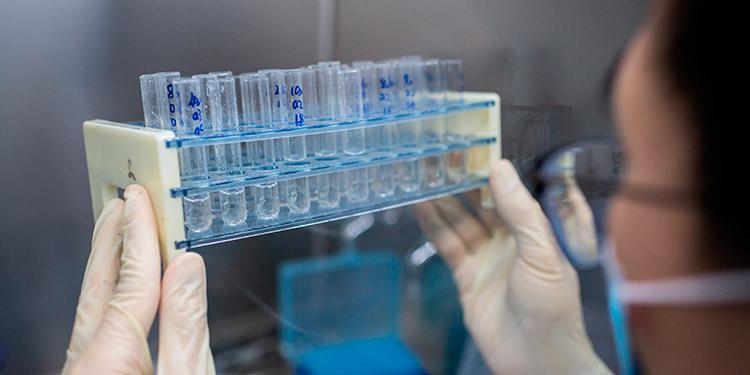 Bruselas pide no sacar conclusiones de interrupción del ensayo de AstraZeneca