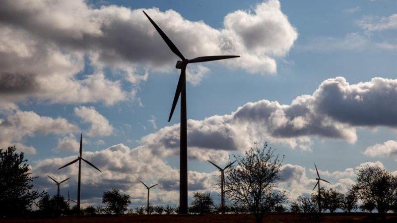 Aumenta el fraude en los proyectos medioambientales de la UE