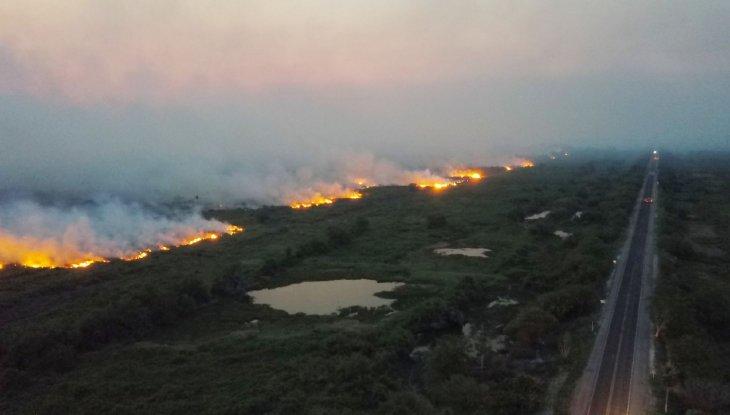Los fuegos en el Pantanal brasileño obligan a accionar el estado de calamidad