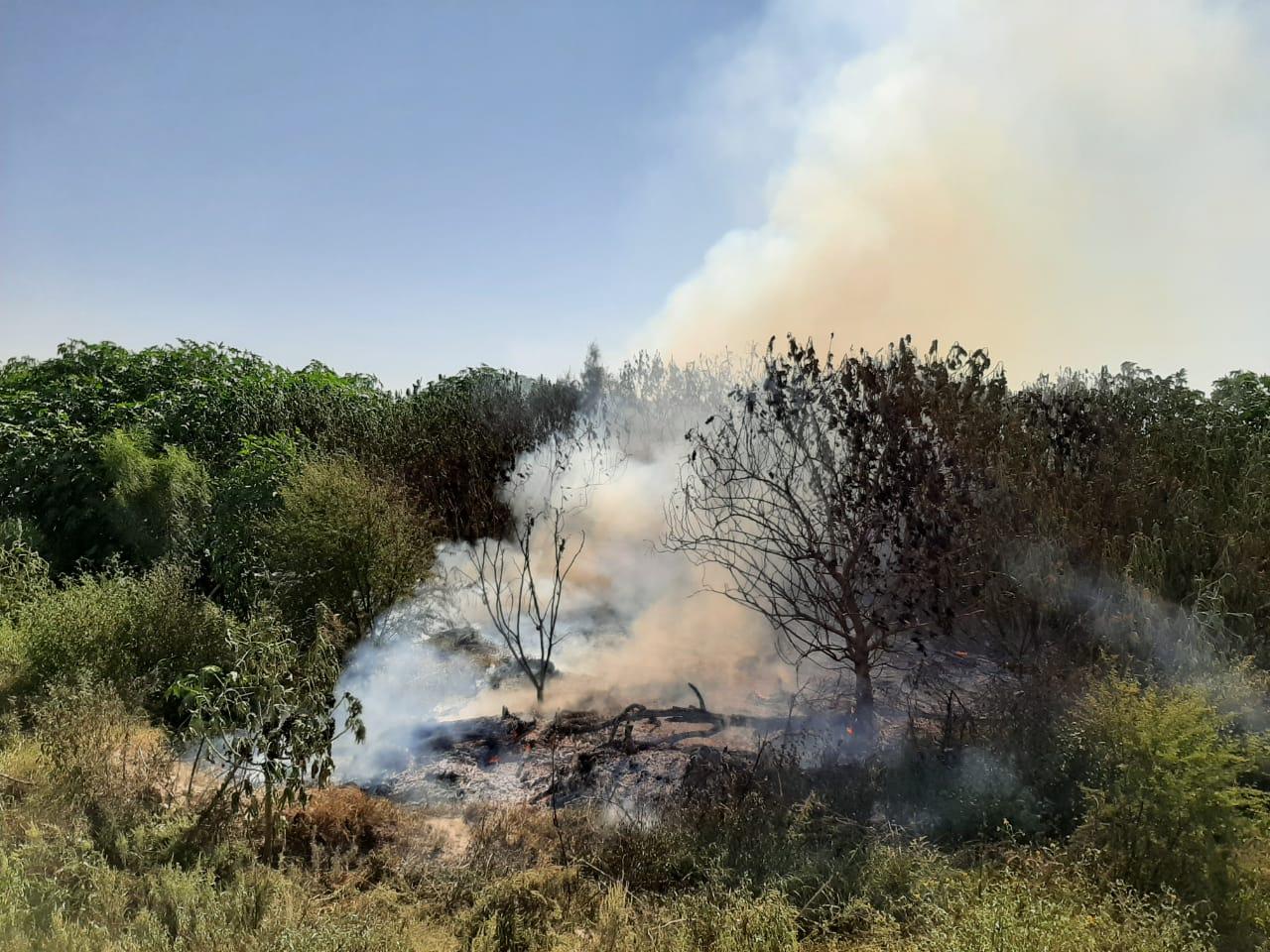 Espera Protección Civil se incrementan los incendios