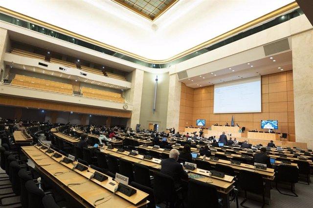 Cuba, China y Rusia entran en el Consejo de Derechos Humanos de la ONU