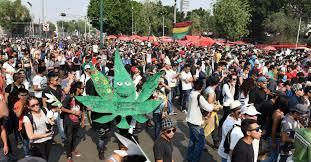 En León, más de 2 mil personas protestan por legalización de marihuana