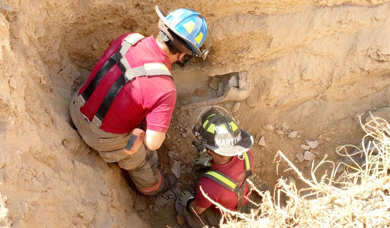 Rescatan a dos perras de tubería en Ecatepec