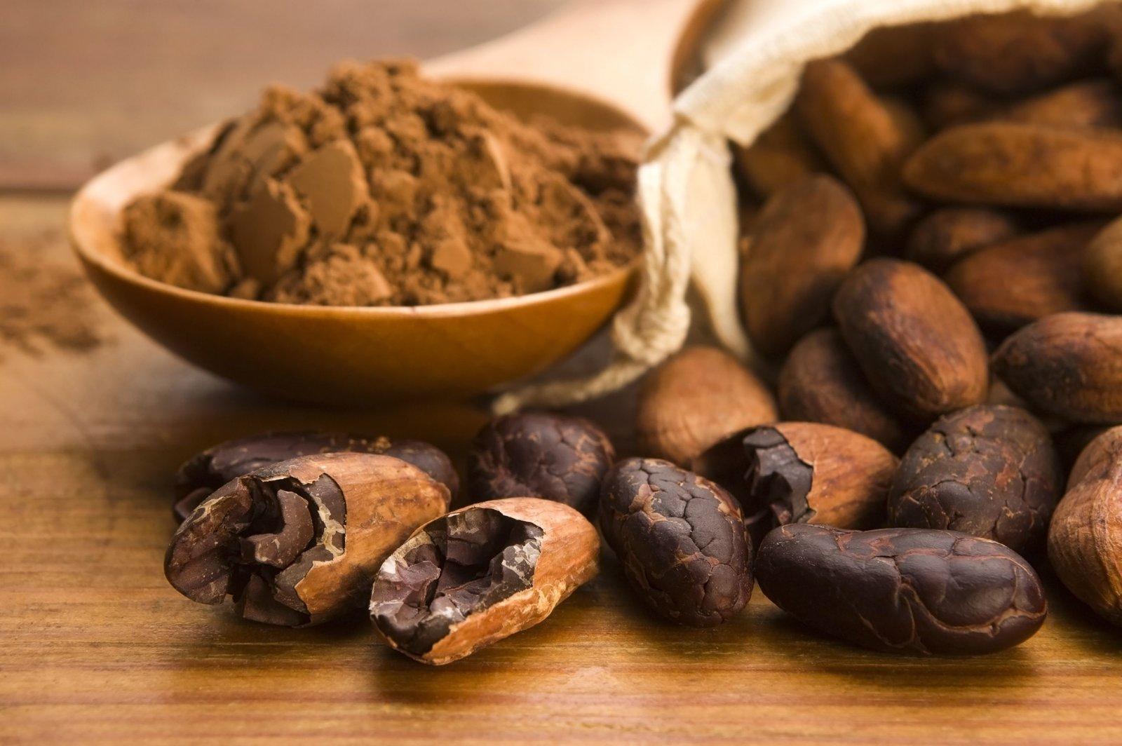 Diez beneficios del cacao para tu salud