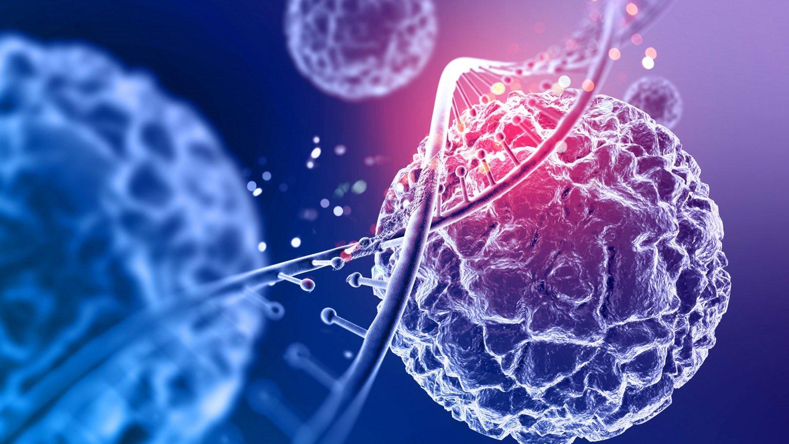 Células madre de tejido umbilical prometen reparación de daños por COVID-19