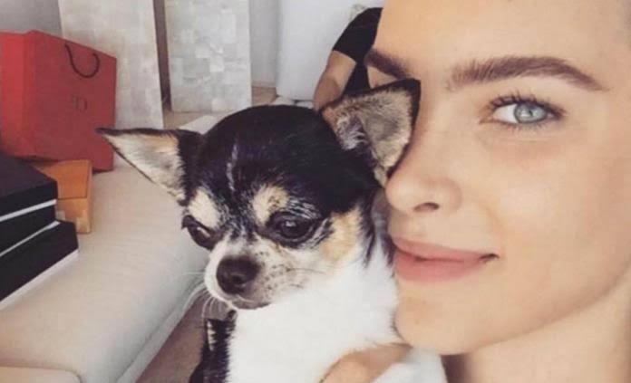 Belinda llora la muerte de su pequeño perro Gizmo