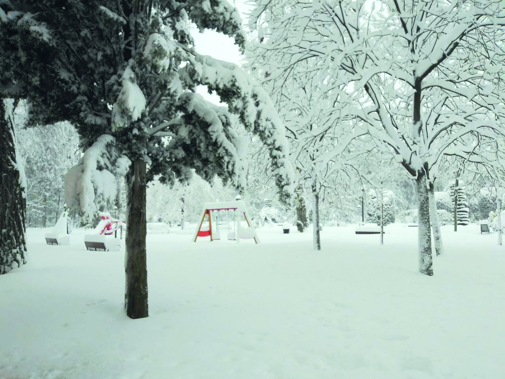 La nevada que al principio parecía divertida luego se convirtió peligrosa