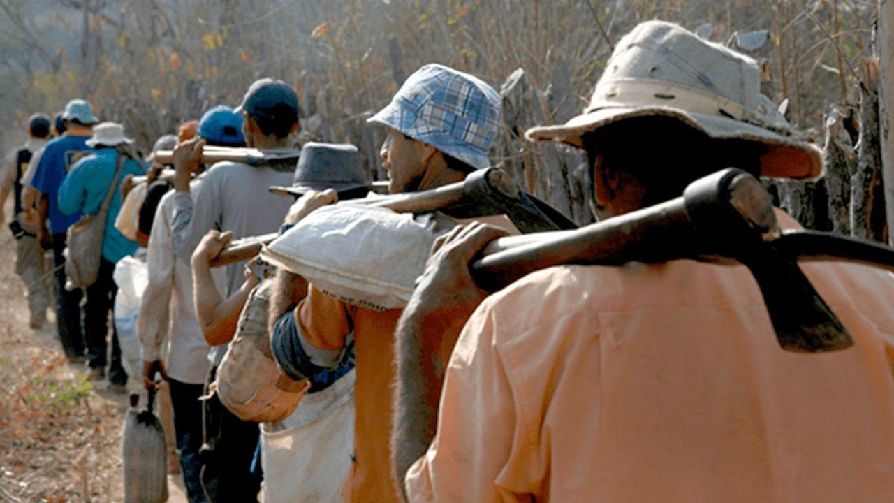 Rescatan a 110 personas en condición de esclavitud en Brasil