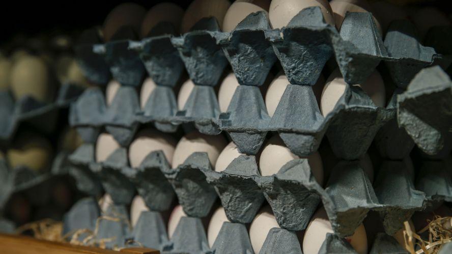 GCMA: Pollo y huevo, favoritos en la pandemia