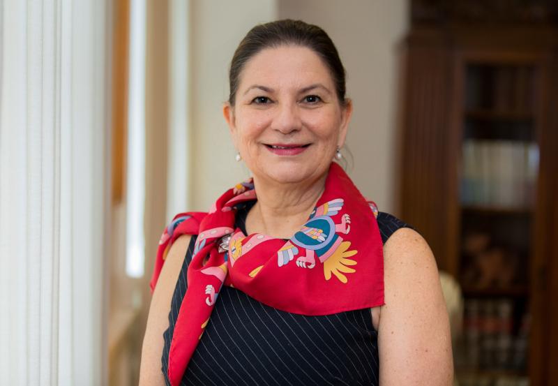 Martha Bárcena: 'En dos años la relación con EU se fortaleció'