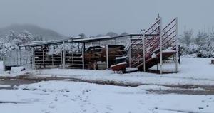 Monitorean zonasvulnerables por la llegada del frío
