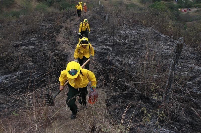 Incendio arrasa unas 3,000 hectáreas de parque natural del este de Colombia