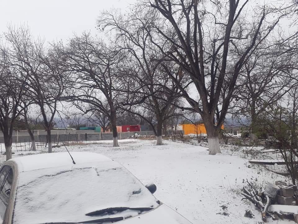 Resisten familias 11 gradosbajo cero en Sacramento