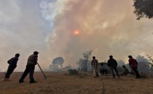 Incendio forestal en Santiago Clavellinas arrasa con 10 viviendas