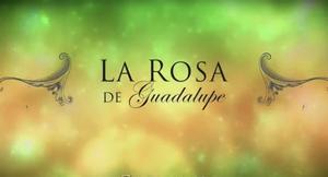 'La rosa de Guadalupe', loa más visto en el encierro