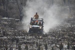 Sofocan en Nuevo León cinco incendios forestales en seis días