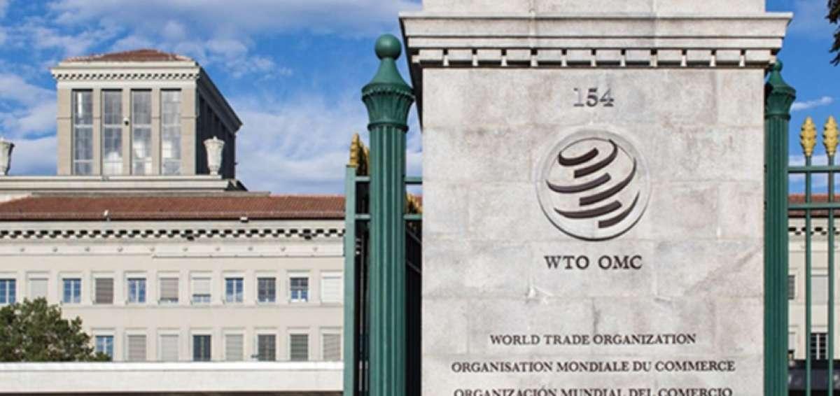 OMC: Recuperación de Comercio de Servicios será a corto plazo
