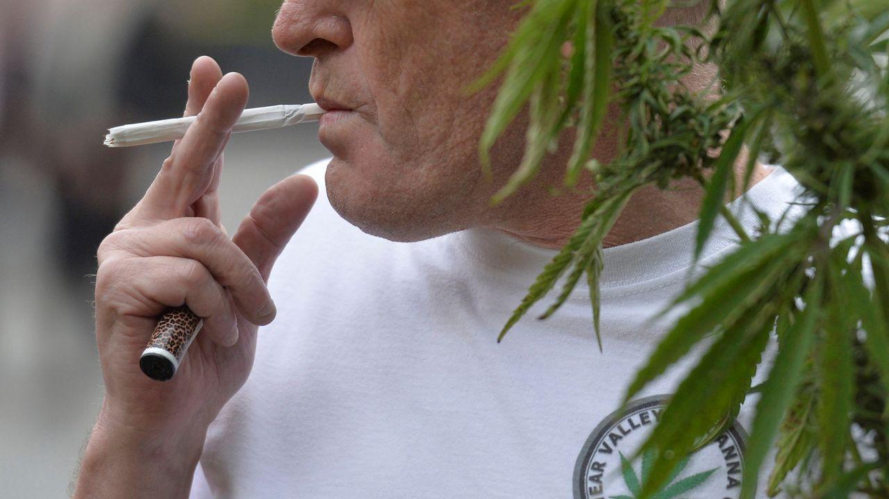 Preocupa al sector educativoel uso lúdico de la mariguana