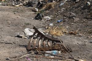 Surge basurero clandestino  y autoridades ni en cuenta