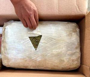 Hallan 5 kilos de marihuana en paquetería en Allende