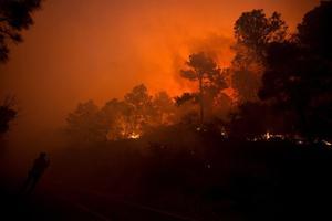 Coahuila eleva estimación de hectáreas afectadas por incendio en Sierra de Arteaga