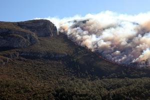 Consume fuego3 mil 500 hectáreas en Arteaga Coahuila