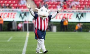 Chivas: Rechazó a la estrella del futbol mexicano