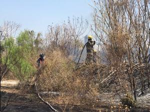 Incendio de carrizos asusta a vecinos en Monclova