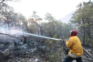 Brigada del ejido Jaboncillos asiste a  la Sierra de Arteaga