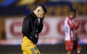 Leo Fernández revela sus secretos en Tigres