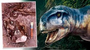 Encuentran en Argentina nueva especie de dinosaurio