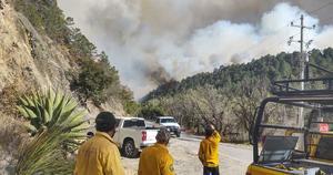 Brigadistas lograron sofocar elincendio en la Sierra de Arteaga
