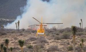 Combaten tres incendios forestales en Nuevo León