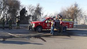 Incendian maleza en Monclova