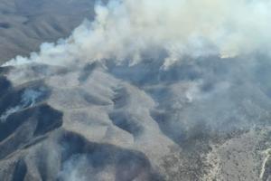 Incendios de Coahuila y San Luis Potosí avanzan en límites con NL