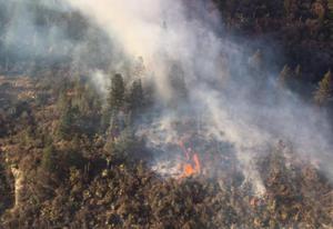 Al 70%, control de incendio en zona de Monterreal en Sierra de Arteaga