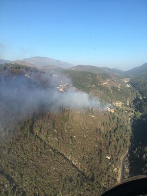 Controlan incendio ensierra de Arteaga: SMA