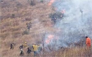 Controlan incendio forestal en la Sierra de Guadalupe en Coacalco