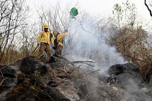 Controlan incendio en cerro de Tepoztlán; resta 10% de liquidación