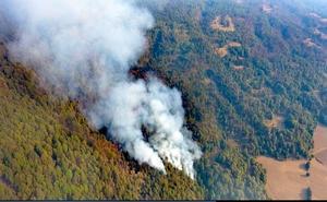 Reportan 10 incendios forestales en Morelos