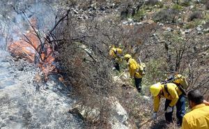 Incendio forestal amenaza a 10 comunidades del sur de NL